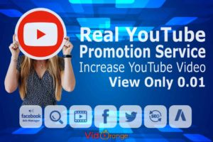 Real YouTube Promotion Service | Increase YouTube Video View Only 0.01